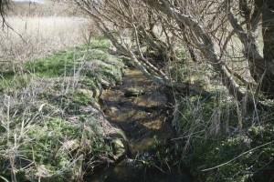 Eskebæk i nationale seværdighed på Ærø i øhavet
