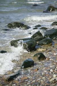Strandsafari som ferieaktivitet på Ærø i det sydfynske øhav med naturvejleder fra Naturgejst