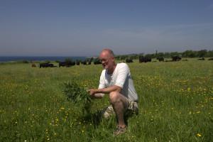 Økologi og lokale produkter på Vesteraas og Voderup Klint på Ærø og i det sydfynske øhav